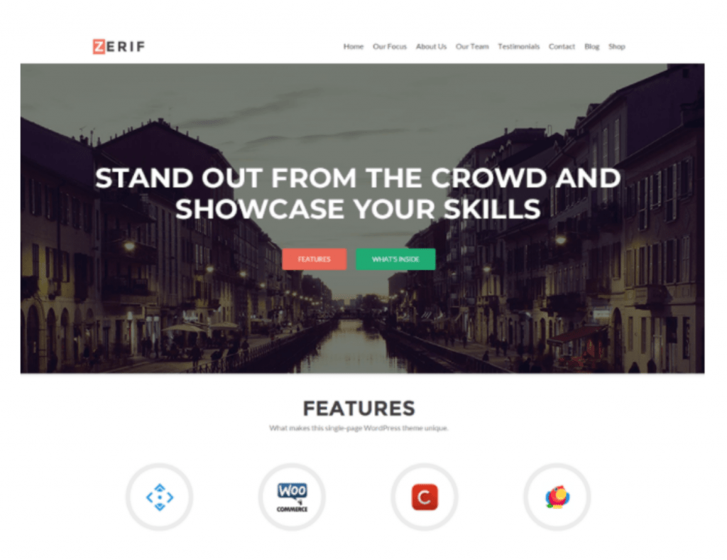 zelle  wordpress theme